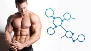 гормоны для увеличения члена