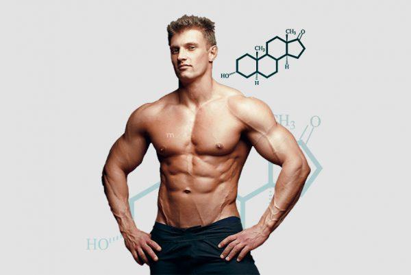 увеличение члена гормонами